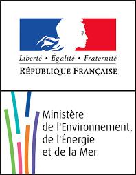 Logo MEED